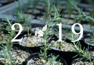 開聞山麓香料園2019年カレンダー