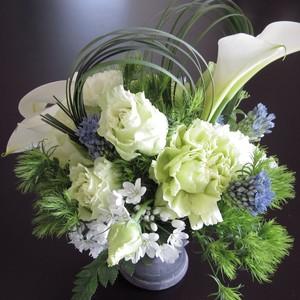 白の花3500円
