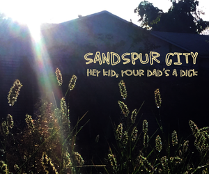 SANDSPUR CITY - Hey Kid, Your Dad is a Dick (CD)
