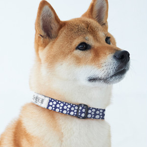 COLLAR PAW DOT【NAVY】犬用首輪