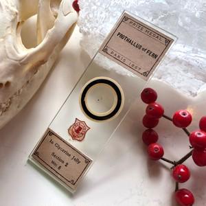 アーサーコールのプレパラート(羊歯の前葉体)