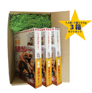 【3箱ギフトセット】★送料込み!三ツ星の美味しさ!沖縄炎熱カレー 贈答用