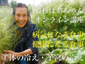 オンライン講座 病気になる食事・健康になる食事①     4/30までセール中!