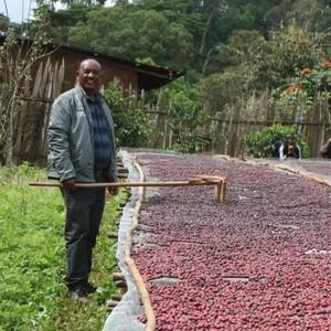 Habtamu Ethiopia Kaffa Wushwush Natural  ハブタム エチオピア カッファ ワシュワシュ ナチュラル 100g