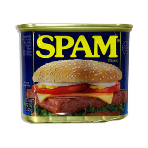 Spam can bank【SPAM】