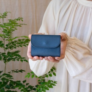 Tiny Wallet / A BLUE