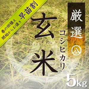 厳選コシヒカリ(玄米 5kg)2018年産