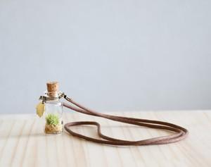 苔アクセサリー moss pendant