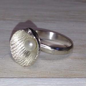 貝殻  パールリング