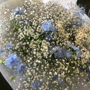 カスミソウの花束