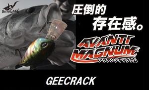 GEECRACK / アヴァンティマグナム DR