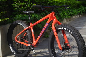20%OFF / SALSA CYCLES / 2018 BEARGREASE CARBON NX1