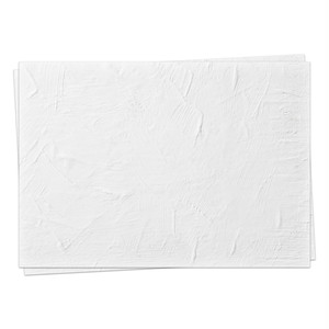 A3背景紙「白い漆喰の壁 #010」