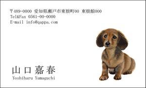イラスト入り名刺5002 (100枚)