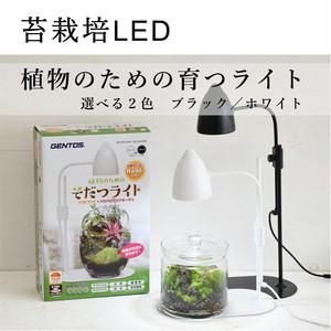 【苔テラリウム栽培用】 植物のためのそだつライト ブラック/ホワイト
