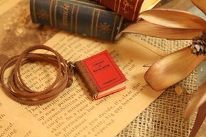 小さな本のネックレス|ストロベリー