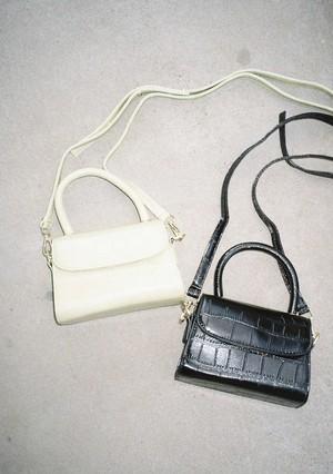 Mini Croco Bag