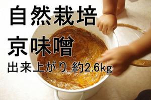 手作り味噌キット 自然栽培 京味噌(出来上がり量2.6kg)