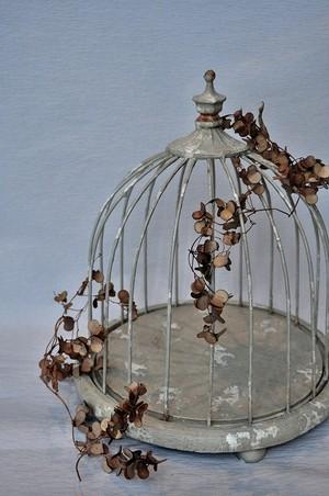 Birdcage no1