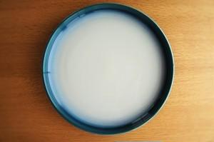 砥部焼/パスタ皿/白/ヨシュア工房