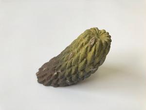 藤川 稔 / 植物陶器 No.012