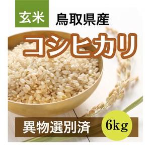 R2年産 コシヒカリ 6kg 玄米(鳥取県産)