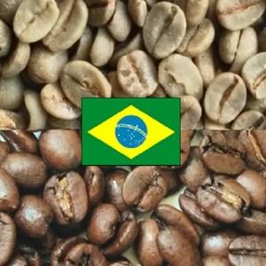ブラジルサントス / 100g コーヒー焙煎注文 自家焙煎コーヒー豆
