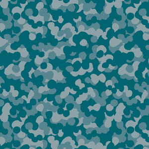camouflage_014