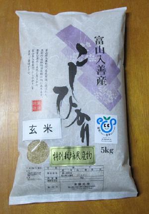 H.29産新米 富山県産特別栽培米こしひかり 玄米5kg