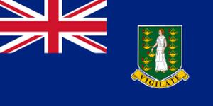 BVI/英領ヴァージン諸島会社登記情報のサンプル