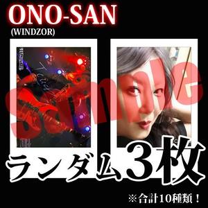 【チェキ・ランダム3枚】ONO-SAN(WINDZOR)