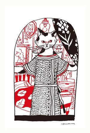 postcard 猫シリーズ ネコマダム