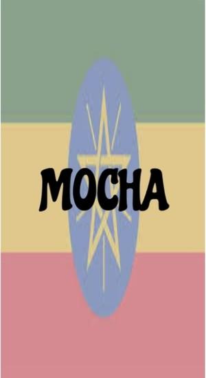 モカ・イルガチャフェ ( エチオピア イルガチェフェ G-2 )