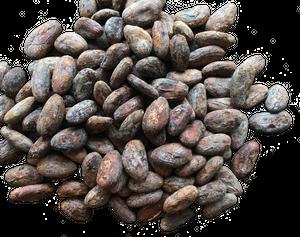 ハイチ カカオ77%  Bean to Bar チョコレート