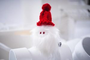 winter albinoYETI