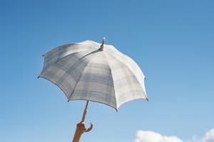 草木染めで手織り布の日傘/EKR-3BL