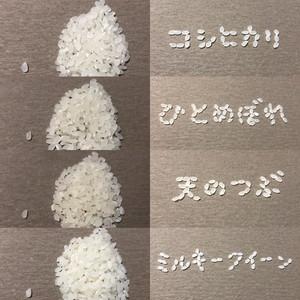 【お歳暮・プレゼント・贈答用】お米屋さんが選んだ感謝の厳選お米セット〜日頃の感謝を米て〜