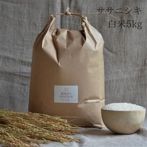 【ササニシキ白米5kg】源流育ちお山のお米