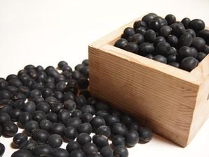 丹波黒大豆(新豆)1.05kg(Lサイズ大玉350g×3袋セット)