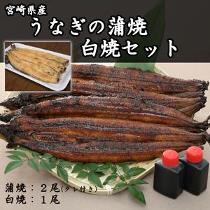 うなぎの蒲焼2尾&白焼1尾 計3尾セット【産地直送】