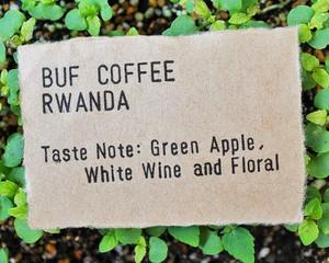 ルワンダ バフ コーヒー