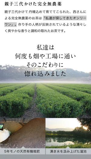 オーガニック抹茶 & 緑茶 ティーバッグ 各15袋セット 農薬不使用 化学肥料不使用| 父の日 お中元 ギフト プレゼント 誕生日 大人向け