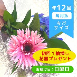 お花の定期便(年12回・毎月払 日曜日お届けコース)ちびサイズ