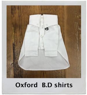 オックスB.Dシャツ [16SSB] A BIENTO!(アビエント)