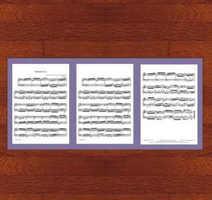 楽譜台紙3枚用