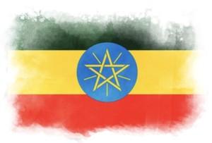 ✨new✨2021 GOOD FOOD AWARD  Ethiopia Bentinenqa washed 100g エチオピア バンティネンカ ウォッシュ