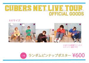 ランダムピンナップポスター(NET LIVE TOUR ver.)