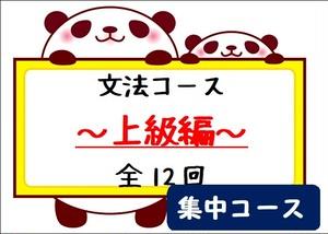 文法コース~上級編~集中コース