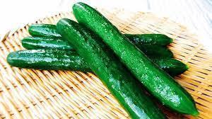 今期終了〜【夏野菜の定番!】キュウリ -Cucumber-