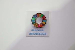 【1個】SDGsピンバッジ『SDGs One』
